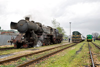 Steam, narrow gauge and rain, 9th April 2014